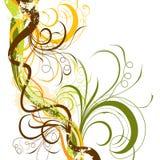 Floral background, vector. Decorative floral background, vector illustration Stock Image