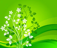 Floral background - vector Stock Images