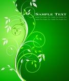 Floral background vector Stock Photos