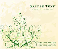 Floral background vector Stock Photography
