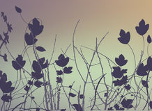 Floral Background Vector Royalty Free Stock Photos