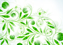 Floral background, vector abstract background Stock Images