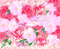 Floral background vector Stock Images