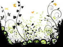 Floral  background  vector design Stock Image