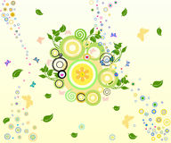 Floral Background - vector illustration. Floral Background with circles and butterflies- vector illustration Stock Photo