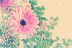 Floral background with vintage effect Royalty Free Stock Photos