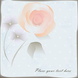 Floral background. Vintage floral background with tender rose Stock Photos