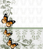 Floral background with wallpaper ornament and butterflies Stock Images