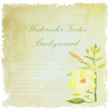 Floral background. Watercolor floral summer wedding card.lily fl Stock Images