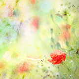Floral background with watercolor poppies stock illustration