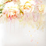 Floral background with watercolor roses Royalty Free Stock Photos