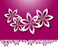 Floral background. White flowers over pink Royalty Free Stock Photography