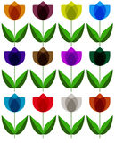 Floral background on wight. Vector Royalty Free Stock Photography
