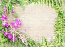 Floral background with wild flowers and herbs. Can used for invitation, announcement, greeting card. Wild wood border frame with plants as ferns leaves and Royalty Free Stock Images