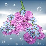 Floral Background With A Hand Drawn Flavor Royalty Free Stock Photo