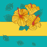 Floral background with yellow hibiscus Royalty Free Stock Photos