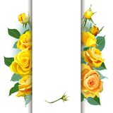 Floral Background with yellow roses Royalty Free Stock Images