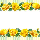 Floral Background with yellow roses Stock Photos