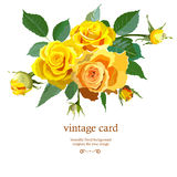 Floral Background with yellow roses Stock Photography