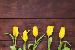 Floral background with yellow tulips over rustic wood Royalty Free Stock Photos