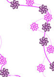 Floral background6. White background with flowers arround Royalty Free Stock Images