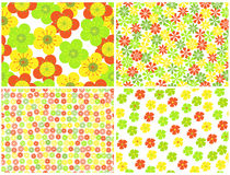 Floral backgrounds. Bright seamless  floral backgrounds.vector illustration Stock Photo