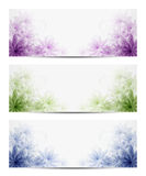 Floral backgrounds. Vector illustration of floral backgrounds. Eps10 Stock Photos