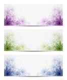 Floral backgrounds. Vector illustration of floral backgrounds. Eps10 Royalty Free Illustration