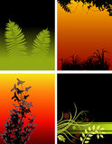 Floral backgrounds. A set of 4 beautiful floral backgrounds in different designs and colors Royalty Free Stock Photos