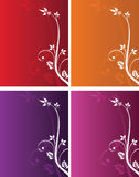Floral backgrounds. Set of four color floral backgrounds stock illustration