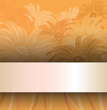 Floral backgrounds with chamomiles Royalty Free Stock Images