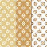 Floral backgrounds with colored seamless pattern. Designs for wallpapers and textile Royalty Free Stock Images