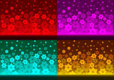 Floral backgrounds. Stock Photography