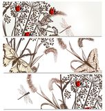 Floral  backgrounds set in elegant style. Vector set of floral hand drawn brochures for design Royalty Free Stock Photo
