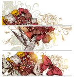 Floral  backgrounds set with flowers,bird and butterflies. Vector set of floral  hand drawn brochures with hummingbirds for business cards design Royalty Free Stock Images