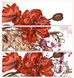 Floral  backgrounds set with poppy flowers Royalty Free Stock Photo