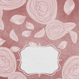Floral backgrounds with vintage roses Royalty Free Stock Image