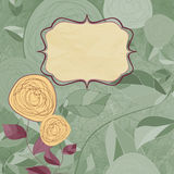 Floral backgrounds with vintage roses.  Royalty Free Stock Image