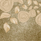 Floral backgrounds with vintage roses. EPS 8. Vector file included Stock Image