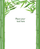 Floral bamboo leaves frame isolated. Chinese nature vector decor. Stock Images