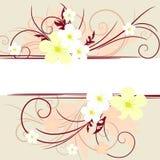 Floral banner Stock Photos