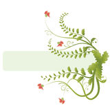 Floral Banner. Banner with flowers and floral swirls Royalty Free Stock Photography