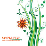 Floral banner. The green floral banner vector Royalty Free Stock Photography