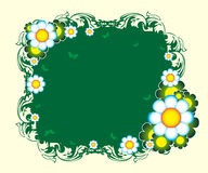 Floral banner Royalty Free Stock Images