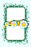Floral banner Royalty Free Stock Photography