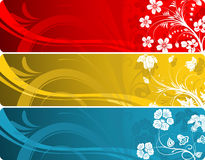 Floral banner. Collect floral banner with variant color, element for design, vector illustration Royalty Free Stock Image