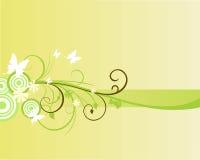 Floral banner. Vector illustration of floral elements Royalty Free Stock Image
