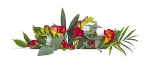Floral banner design with blossom flowers and copy space area Stock Image