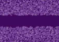Floral banner with lilac Royalty Free Stock Photo