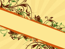 Floral banner ornaments. Vector illustration of a banner with floral swirly ornament on background  with rays Stock Photo